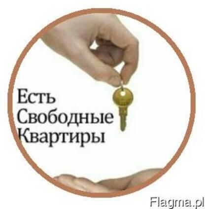 Аренда квартир,договора сьёма,поиск недвижимости