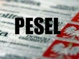 Быстрое получение Pesel(песель)\Meldunek(прописка)