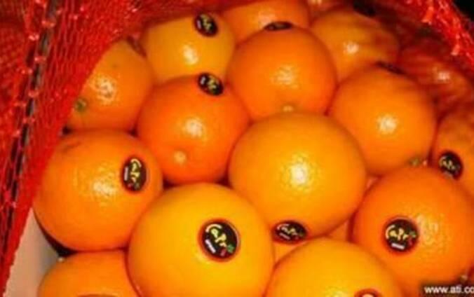 Цитрусовые фрукты со склада в Польше