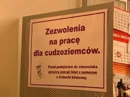 Доп. услуга zezwolenie na pracę в Делегатурах