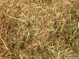 Flax Shives Bedding for Horses, Small pets and Livestock.