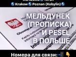 Гданьск Прописка Песель Ночлег - фото 1