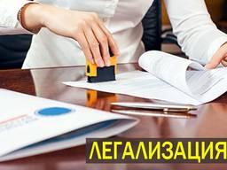 Помощь в оформлении документов. Легализация иностранцев в Польше. Консультации