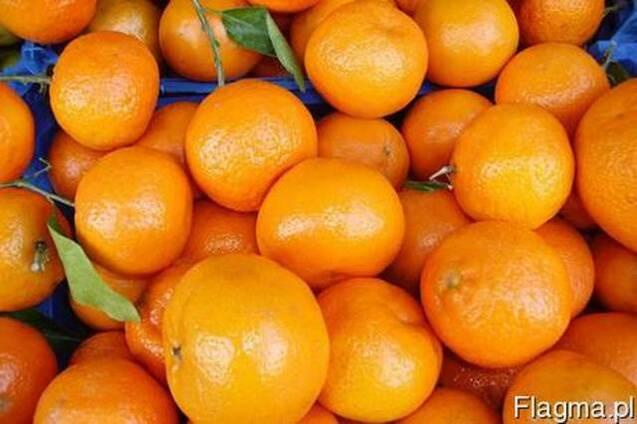 Мандарины апельсины