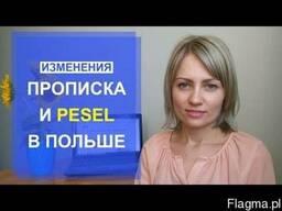Meldunek(прописка)-pesel(песель)-rejestracja samochodu!!!