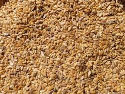 Nasiona lnu семена льна