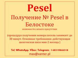 Номер Песель (PESEL) Мельдуек (Meldunek) прописка