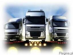 Открываем транспортную компанию в Польше под ключ!!!