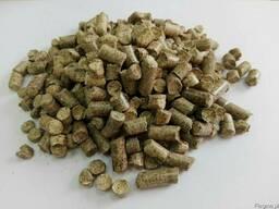 Pellety (granulat paliwowy)