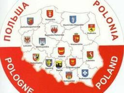 Помощь в получении Pesel в Варшаве