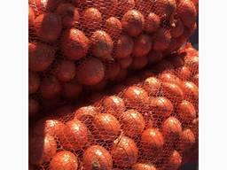 Продам лук репчатый из Украины.