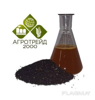 Producent oleju rzepakowego