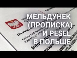 Прописка Консульский Люблин Песель регистр. авто