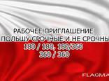 Рабочее приглашение в Польшу для Грузии и России - photo 1
