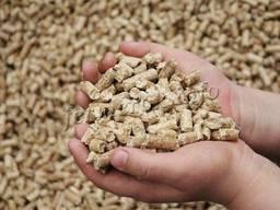 Sprzedać śruta sojowy hurtowo, fabryka Ukraine