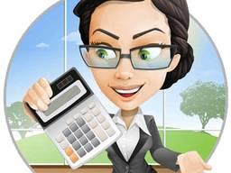 Услуги бухгалтера профессионально