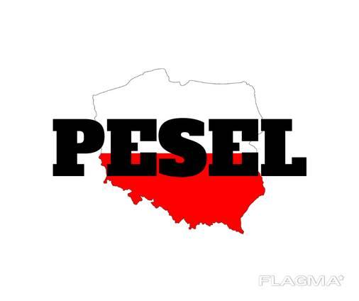 PESEL! Без прописки! За 15 минут! (Karta Pobytu)! Warszawa.