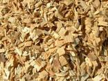 Wióry z drewna iglastego, a także drewno opałowe i tarcica - photo 1