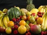 Здравствуйте, мы ищем поставщика фруктов в Литву - photo 1