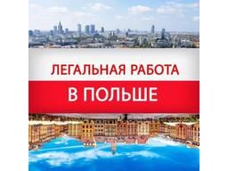 Работа в Польше бесплатные вакансии от прямых работодателей